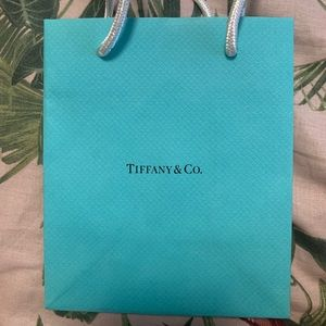 Tiffany & Co mini gift bag new textured blue gift